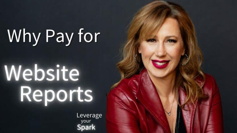 Why Would You Pay for Website Reports?