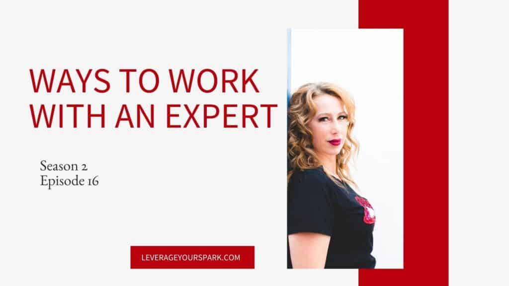 Ways to work with an expert